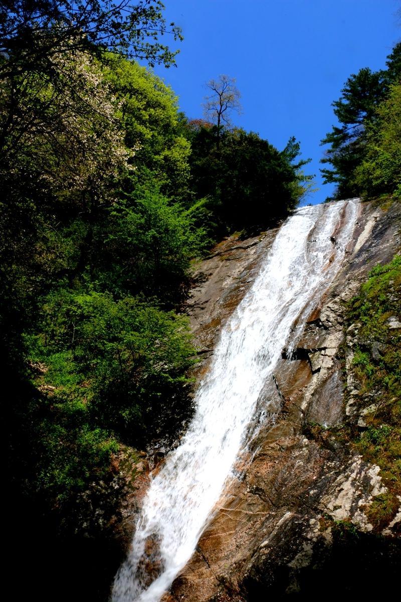 朱雀森林公园瀑布